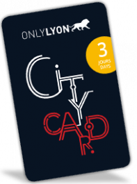 Lyon City Card 3 days : Adult