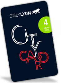 Lyon City Card 4 days: Adult